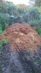 picture of manure