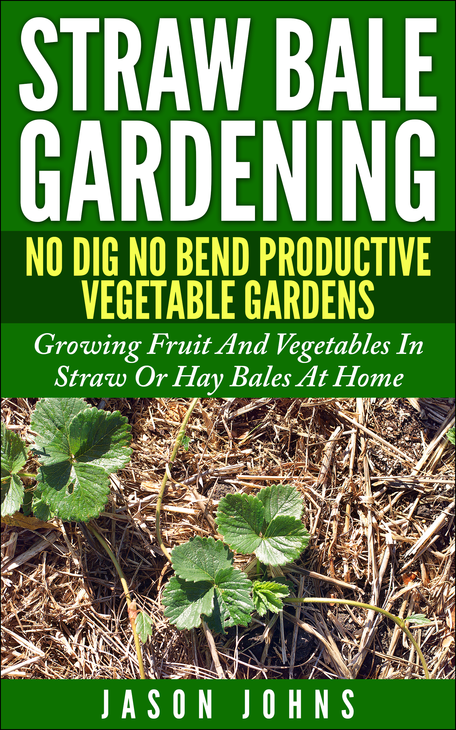 No dig vegetable gardens with raised garden beds - Straw Bale Gardening No Bend No Dig Productive Vegetable Gardens Growing Fruit And Vegetables In Straw Or Hay Bales At Home