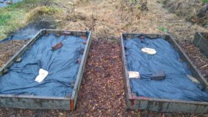 covered raised bed image