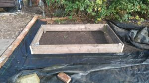 raised bed picture
